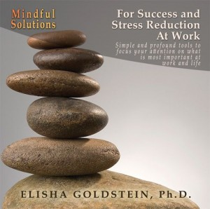 Mindful Solutions for Success and Stress Reduction at Work